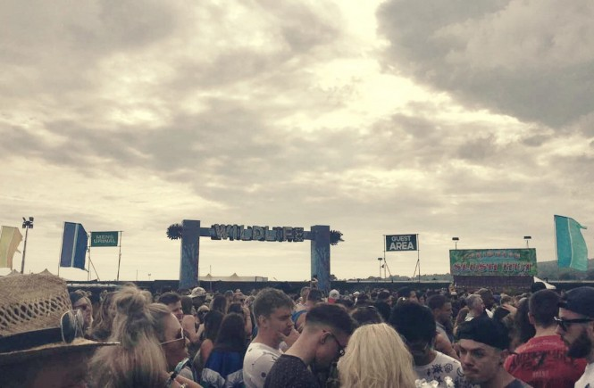 Wildlife festival 2016 Brighton